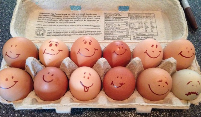 Happy Chickens and Yummy Eggs